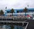Mua hải sản tươi ngon ở chợ cá Sydney