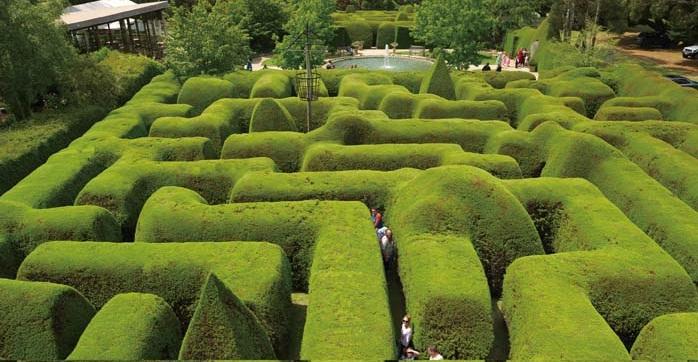 Kết quả hình ảnh cho Vườn mê cung Ashcombe