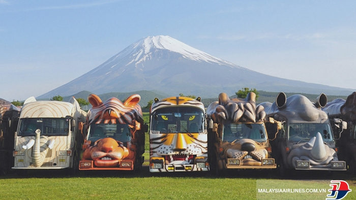 Công viên Safari Fuji