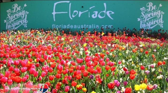 lễ hội hoa Floriade