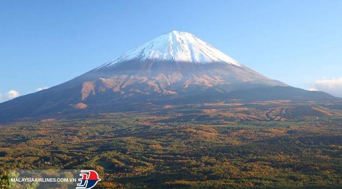 Núi Phú Sĩ ngắm từ rừngAokigahara
