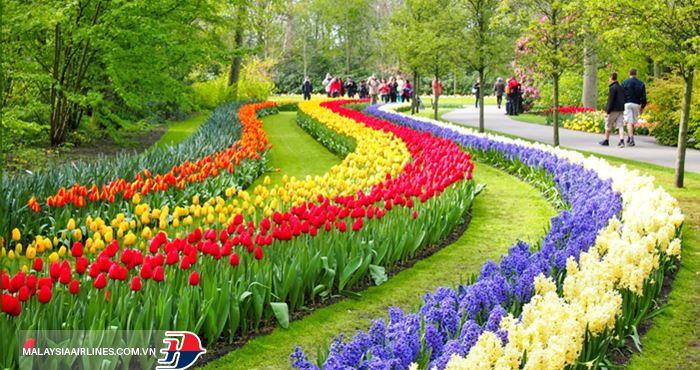 Vườn hoa là nơi thu hút hàng trăm nghìn lượt du khách ghé thăm mỗi năm