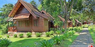 Ghé thăm khu rừng già Taman Negara